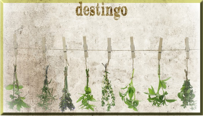 Destingo - Contemporary Italian Kitchen - Display Ad